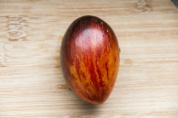 Tomate Gargamel - Pflanze (BIO)