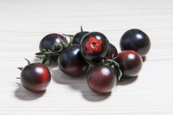 Tomate Helsing Junction Blue - Pflanze (BIO)