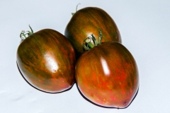 Tomate Black and Red Boar - Pflanze (BIO)